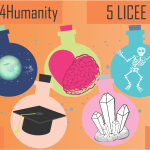 5 Licee 5 Institute